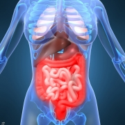 Hot Topics aus der Inneren Medizin